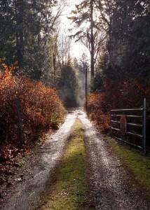 pnw_pathway